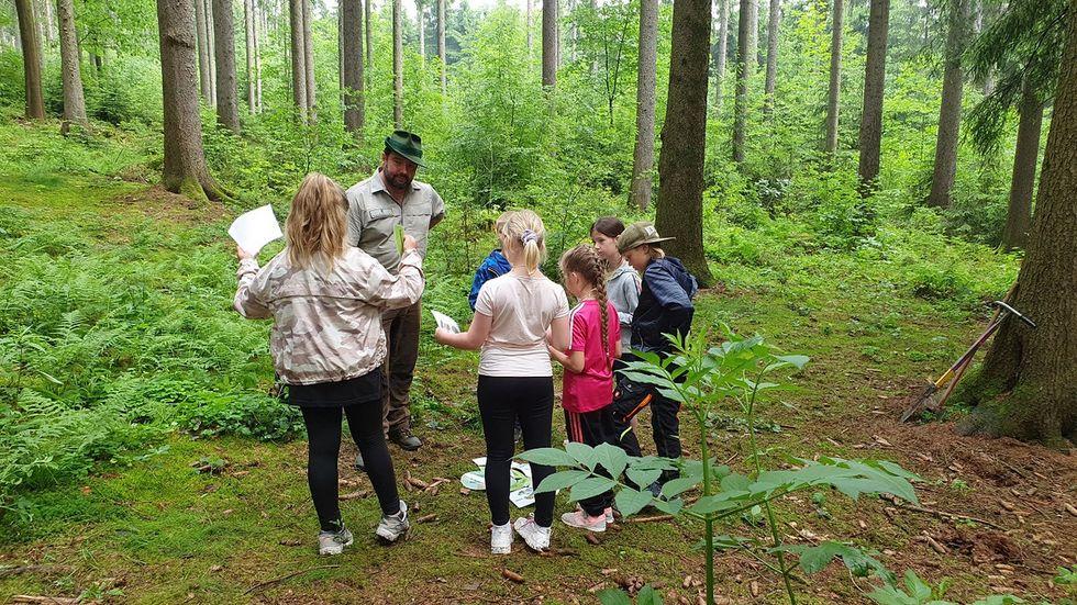 Die Förster erklären den Kindern alles Wichtige rund um den Wald und dessen Bewohner.